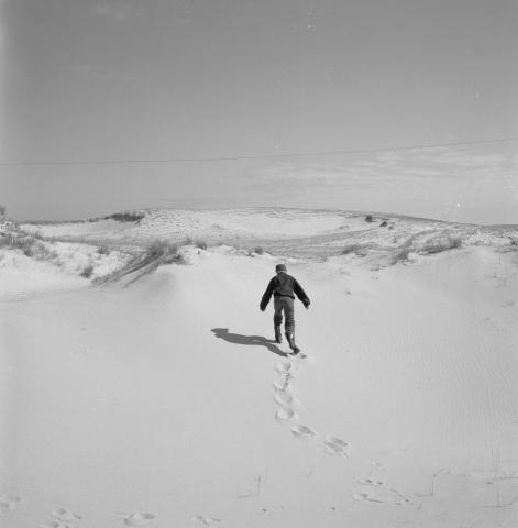 Back view of a figure walking through snow-covered field